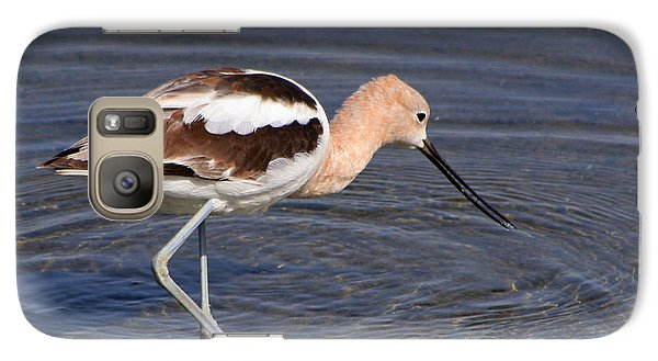 Galaxy Case featuring the photograph American Avocet by Bob and Jan Shriner