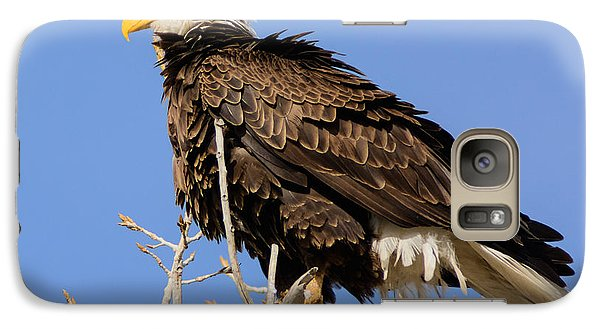 Galaxy Case featuring the photograph American Bald Eagle Standing Proud by Stephen  Johnson