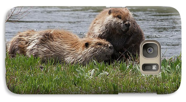 American Beaver Pair Galaxy S7 Case