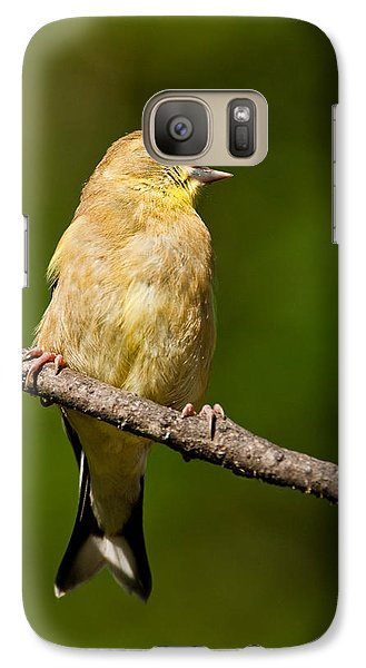 Galaxy Case featuring the photograph American Goldfinch Singing by Jeff Goulden