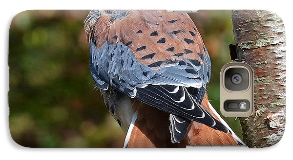 Galaxy Case featuring the photograph American Kestral Portrait by Rodney Campbell