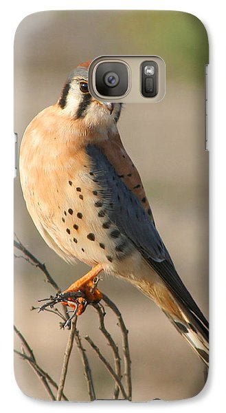 Galaxy Case featuring the photograph American Kestrel by Bob and Jan Shriner