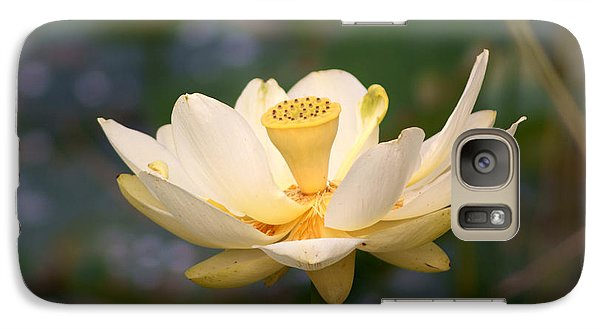Galaxy Case featuring the photograph American Lotus by B Wayne Mullins