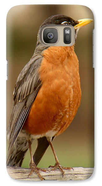 Galaxy Case featuring the photograph American Robin by Bob and Jan Shriner