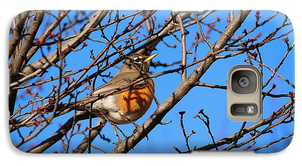 Galaxy Case featuring the photograph American Robin by Rima Biswas