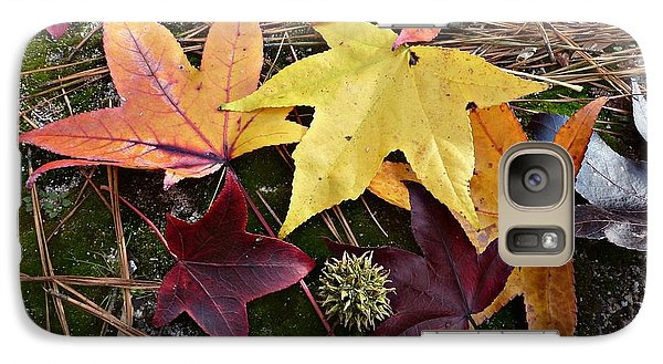 Galaxy Case featuring the photograph American Sweetgum Autumn Display by William Tanneberger