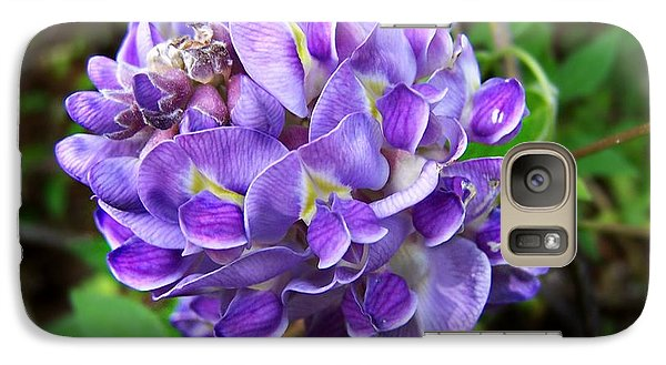 Galaxy Case featuring the photograph American Wisteria by William Tanneberger