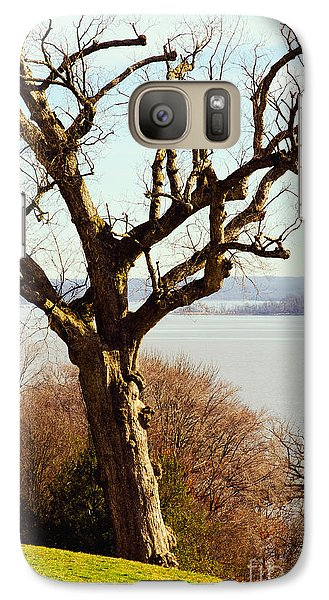 Galaxy Case featuring the photograph An Ancient Native Chinquapin Oak Tree by MaryJane Armstrong