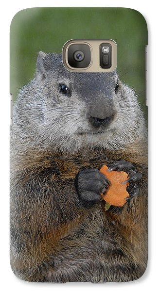And Have You Looked In The Mirror Lately Galaxy S7 Case by Paul W Faust -  Impressions of Light