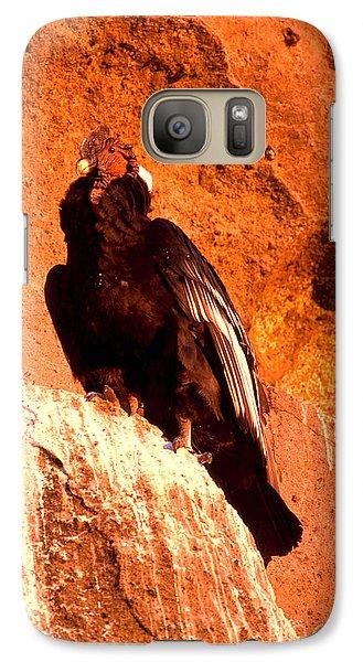 Andean Condor Galaxy S7 Case by Art Wolfe