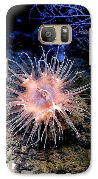 Galaxy Case featuring the photograph Anemone Sea Life Sea Ocean Water Underwater by Paul Fearn