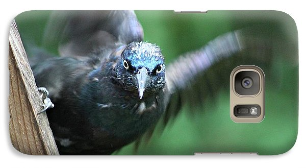 Galaxy Case featuring the photograph Angry Bird by Michaela Preston