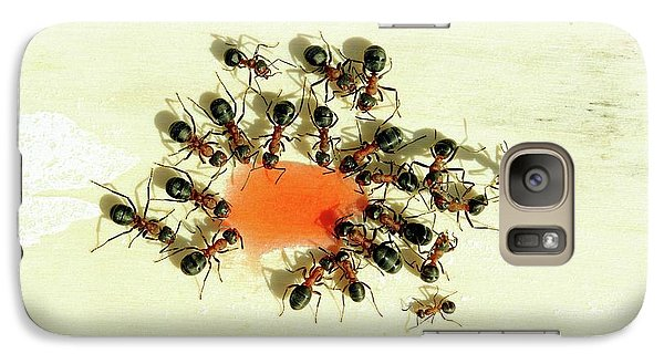 Ants Feeding Galaxy S7 Case by Heiti Paves