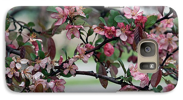 Galaxy Case featuring the photograph Apple Blossom Time by Kay Novy