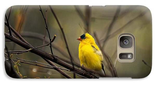 Finch Galaxy S7 Case - April Showers In Square Format by Lois Bryan