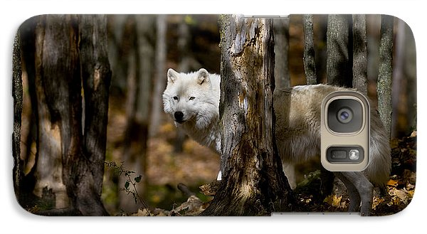 Galaxy Case featuring the photograph Arctic Wolf In Forest by Wolves Only