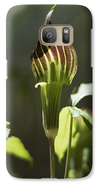 Galaxy Case featuring the photograph Arisaema Triphyllum Jack-in-the-pulpit by Rebecca Sherman