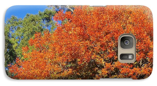 Galaxy Case featuring the photograph Arizona Fall 3 by David Rizzo