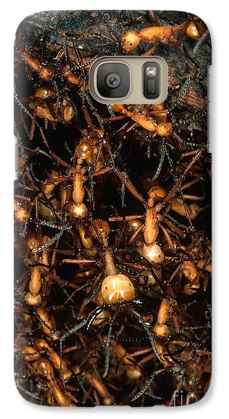 Army Ant Bivouac Site Galaxy S7 Case by Gregory G. Dimijian, M.D.