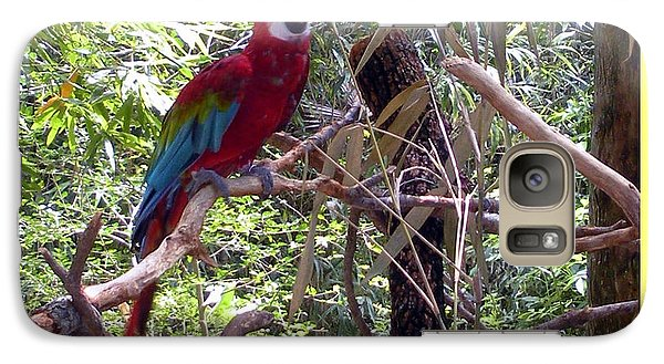 Galaxy Case featuring the photograph Artistic Wild Hawaiian Parrot by Joseph Baril