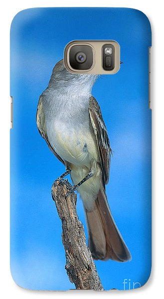 Ash-throated Flycatcher Galaxy S7 Case