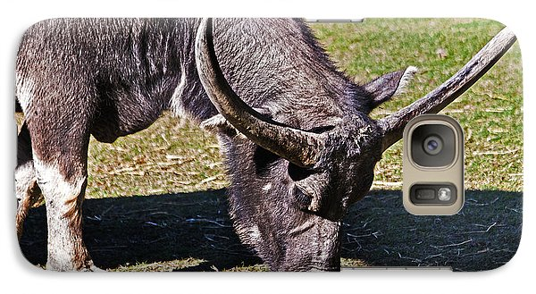 Asian Water Buffalo  Galaxy S7 Case by Miroslava Jurcik