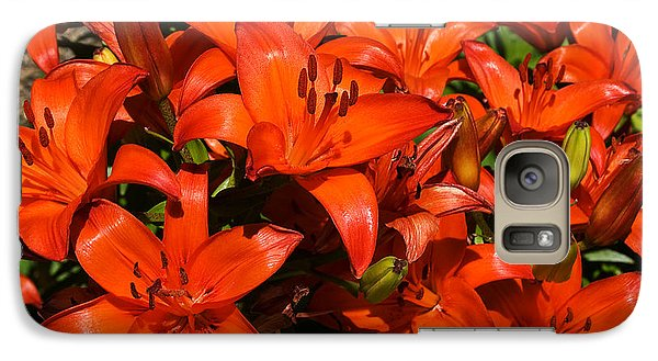 Galaxy Case featuring the photograph Asiatic Lily by Sue Smith