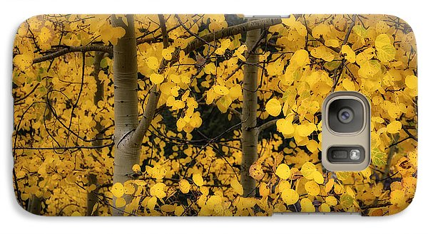Galaxy Case featuring the photograph Aspen Color by The Forests Edge Photography - Diane Sandoval