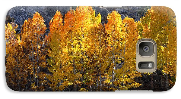 Galaxy Case featuring the photograph Aspen Gold by Lynn Bauer