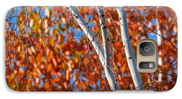 Galaxy Case featuring the photograph Aspen by Sebastian Musial