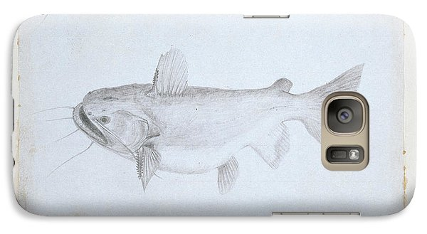 Catfish Galaxy S7 Case - Asterophysus Batrachus by Natural History Museum, London
