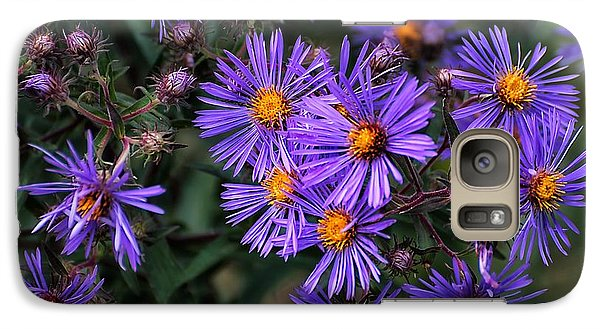 Galaxy Case featuring the photograph Asters In Autumn by Beth Akerman