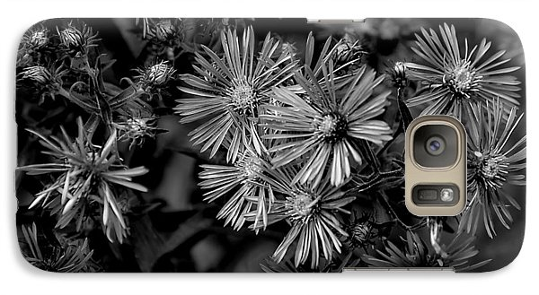 Galaxy Case featuring the photograph Asters In Monochrome by Beth Akerman