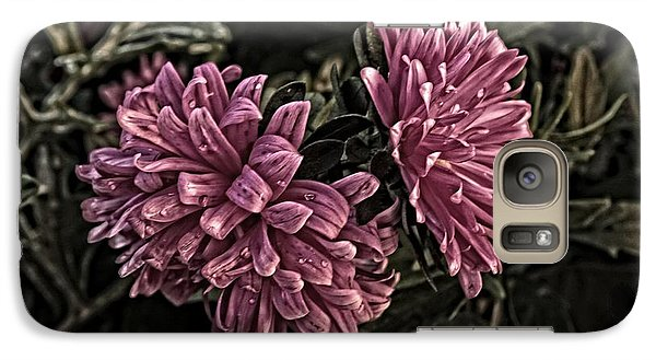Galaxy Case featuring the photograph Asters In The Garden by Marjorie Imbeau