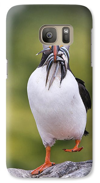 Atlantic Puffin Carrying Greater Sand Galaxy Case by Franka Slothouber