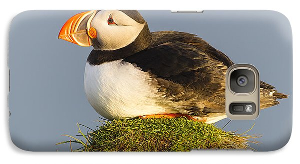 Atlantic Puffin Iceland Galaxy S7 Case