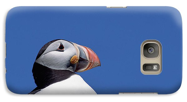 Atlantic Puffin In Breeding Colors Galaxy S7 Case by Yva Momatiuk and John Eastcott