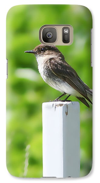 Galaxy Case featuring the photograph Attentive Phoebe by Anita Oakley