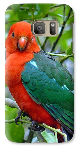 Galaxy Case featuring the photograph Australian King Parrot Portrait by Margaret Stockdale