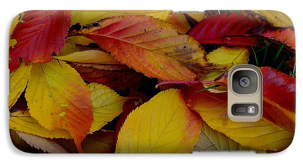 Galaxy Case featuring the photograph Autum by Barbara Walsh