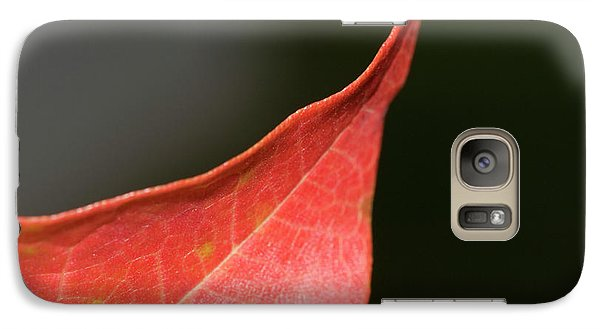 Galaxy Case featuring the photograph Autumn 2 by Tara Lynn