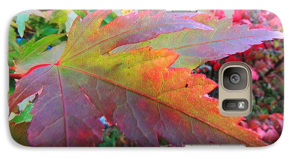 Galaxy Case featuring the photograph Autumn Beauty by Karen Horn