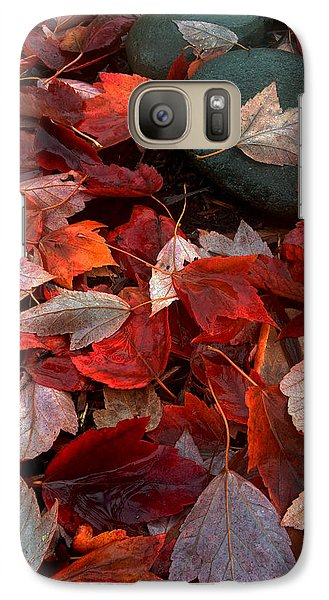 Galaxy Case featuring the photograph Autumn Broadcast by Gwyn Newcombe