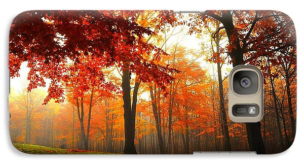 Galaxy Case featuring the photograph Autumn Canopy by Terri Gostola