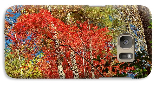 Galaxy Case featuring the photograph Autumn Colors by Patrick Shupert
