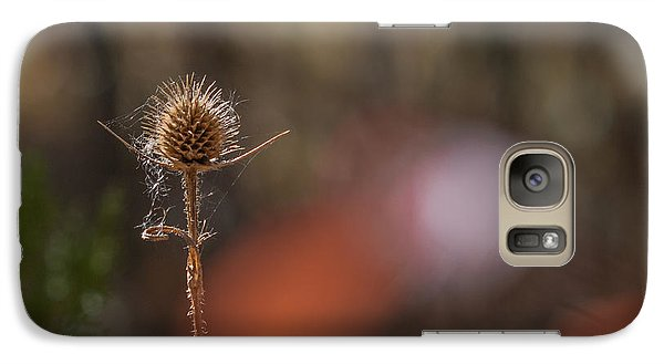 Galaxy Case featuring the photograph Autumn Dry Teasel by Jivko Nakev