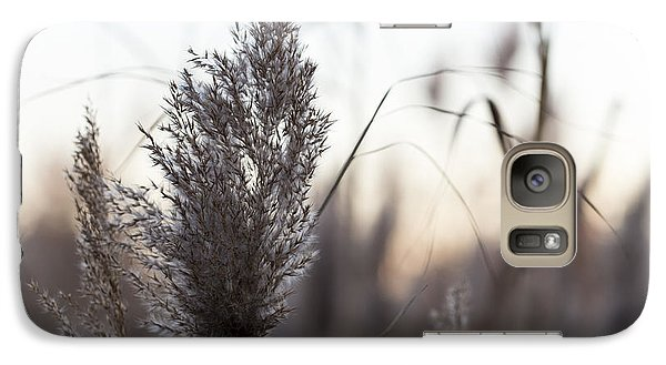 Galaxy Case featuring the photograph Autumn In The Tall Grass by Andrew Pacheco