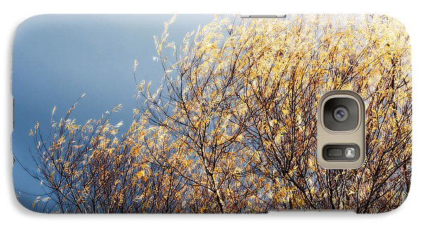 Galaxy Case featuring the photograph Autumn Is Leaving by Gwyn Newcombe
