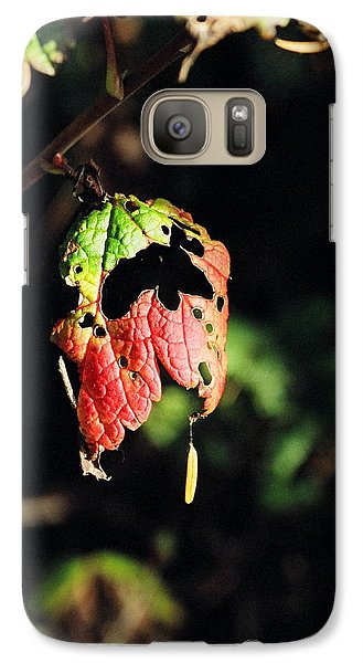 Galaxy Case featuring the photograph Autumn Leaf by Cathy Mahnke