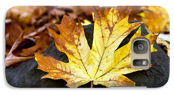 Galaxy Case featuring the photograph Autumn Leaf by Crystal Hoeveler